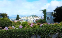 San Francisco as seen from Lombard Street