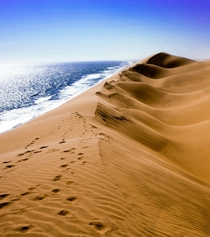 Sand dunes meet the ocean Naukluft National Park Namib by my sister