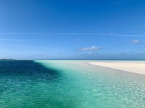 Sandbar off of Eleuthera Bahamas