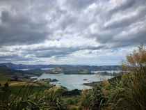 Sandymount Track on the Otago Peninsula New Zealand