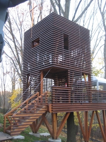 Sapele wood treehouse built around a tree on the Mainline in Philadelphia Design was inspired by a Japanese paper lantern