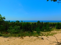 Saugatuck Dunes Michigan