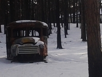 school bus in Black Forest CO  OC