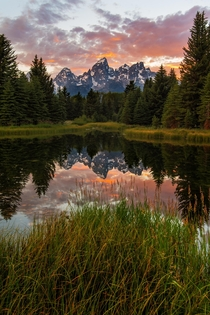 Schwabacher Landing in Grand Teton National Park What a magical place OC  x