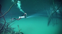 Scuba diving in an underwater river Cenote Angelita Mexico  by Anatoly Beloshchin