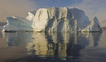Sculptured iceberg in North Bay Rothera Point Adelaide Island Antarctica