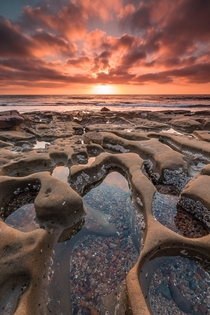 Sea Craters The Tide Pools of La Jolla California at Sunset
