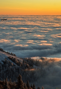 Sea of clouds flooding the forest below Slovenia  IGsp_aceli