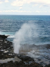 Sea spout South Pacific