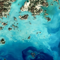 Seaweed farms Sisan Island South Korea by Jesse Allen of NASA Earth Observatory