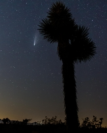 Second attempt at Astro first at shooting Neowise From Joshua Tree