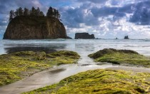Second Beach Olympic Peninsula in Washington