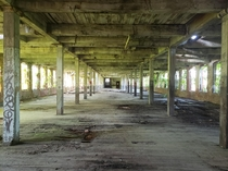 Second floor of an abandoned factory