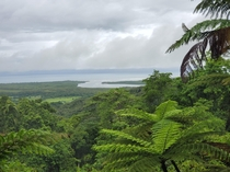 Seeing the vast beauty of the Daintree Rainforest Australia via the Mount Alexandra lookout