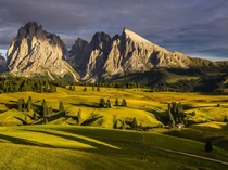 Seiser Alm - the Alpine meadow at the base of the Dolomites Italy  by Hans Kruse