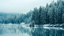 Serene Winter Lake and Trees