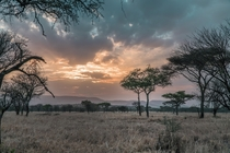 Serengeti National Park camp view  OC