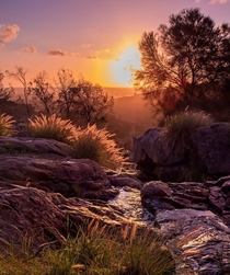 Serenity Sunset in the hills of Perth Western Australia OC x
