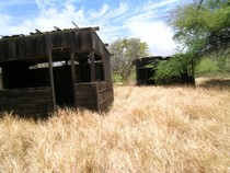 Shacks my grandfather used on the west end of Molokai Hawaii