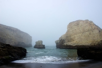 Shark Fin Cove CA