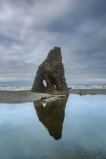 Sharks Fin Ruby Beach WA