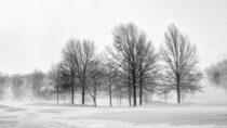 Sharon Country club during blizzard Sharon center Ohio  x