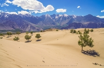 Shigar Desert with the Karakoram Mountains in the background - Pakistan  by Adeel Shaikh