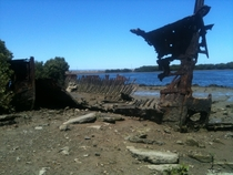 Shipwrecks at low tide