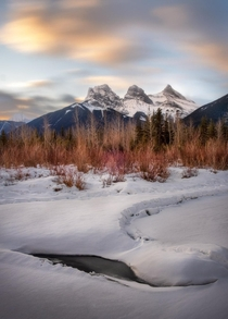 Shooting sunrise at - degrees Celsius is an absolute treat this time of year in Canmore