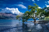 Shores of Lake Wakatipu Queenstown New Zealand