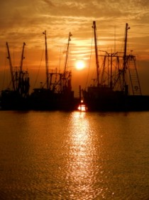 Shrimp boats on Amelia River at sunset