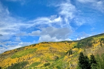 Signs of changing seasons in Vail Colorado