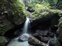 Silken Waterfall in El Yunque Rainforest