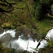 Silver Falls is one of the most popular state parks in Oregon for a reason