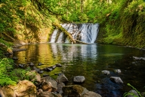 Silver Falls State Park OR