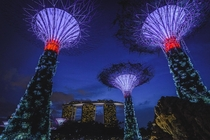 Singapore and the supertrees