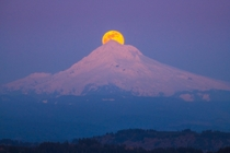 Single image of the supermoon above Mt Hood from Happy Valley Oregon