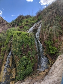 Sitting Bull Waterfall Oasis in New Mexico   x
