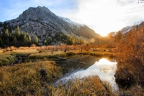 Situated just outside of Yosemite Lundy Canyon is a hidden gem of the Eastern Sierra