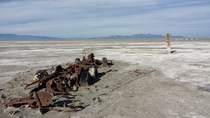 Skeleton of a boattruck from the shores of Great Salt Lake