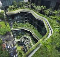 Sky Gardens at the ParkRoyal in Singapore