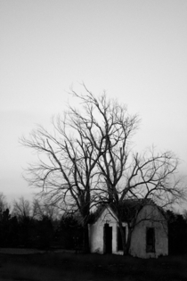 Small building with dead trees on the Oklahoma  Texas Border
