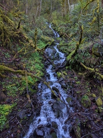 Small runoff at Multnomah Falls OR  x