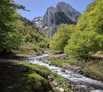 Small stream in the french Pyrenees