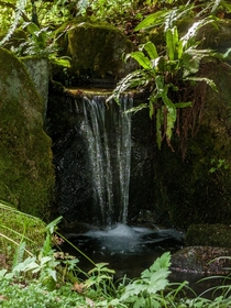 Small waterfall at Lakewold Gardens in Lakewood Washington
