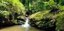Small waterfall deep in the Pennsylvania woods - Brandywine Valley