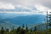 Smoky Mountain National Forest