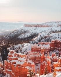 Snow-covered hoodoos in Bryce and SO COLD  OC cbyeva
