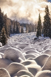 Snow covered stones in Vitosha National Park Bulgaria