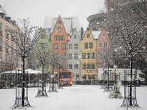 Snow In Cologne Germany
